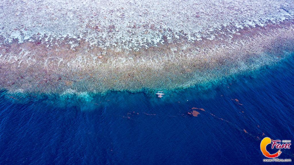 【自由潛旅全攻略】菲律賓·宿霧·薄荷島|  行程/交通/注意事項