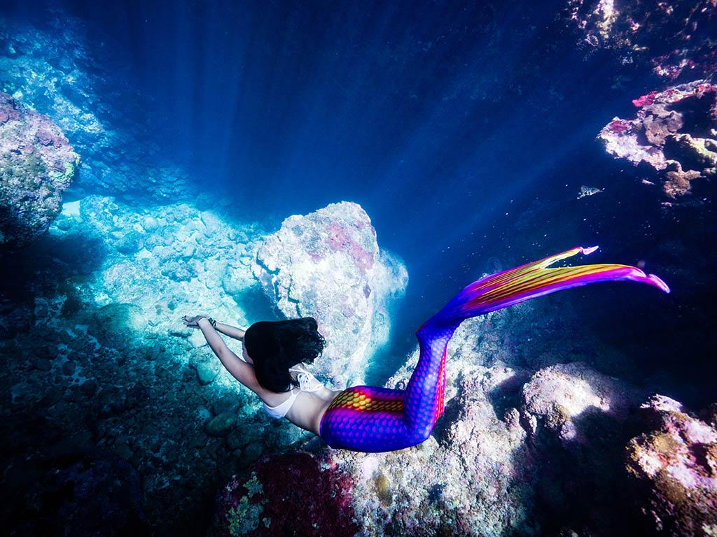 【海外課程資訊】菲律賓美人魚學校|美人魚潛水課程X寫真攝影